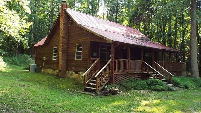 Blairsville Single Family Home For Sale: 100 Pea Ridge Way