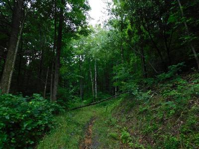 Hayesville Residential Lots & Land For Sale: Tr 2c State Highway 64