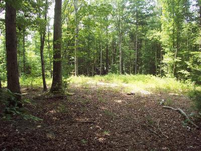 Murphy Residential Lots & Land For Sale: Tract 3 Savannah Lane