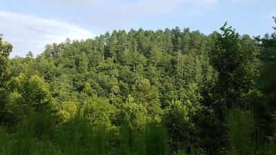 Residential Lots & Land For Sale: 58 Wilderness Lake Drive
