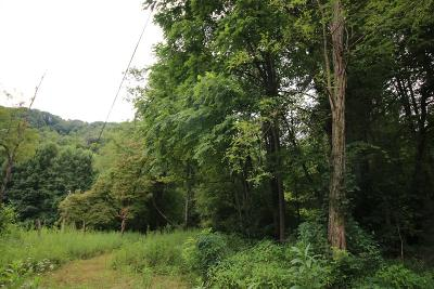 Robbinsville Residential Lots & Land For Sale: Lot 2 Anderson Creek Road