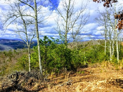 Murphy NC Residential Lots & Land For Sale: $19,000