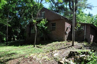 Brasstown Single Family Home For Sale: 3010 Green Cove Rd