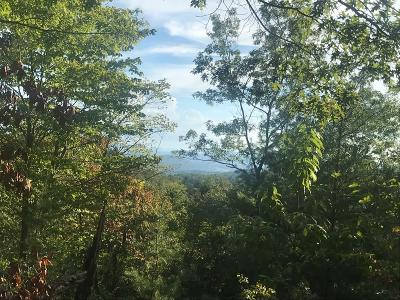 Murphy Residential Lots & Land For Sale: 00 Lizzy Elliot Road