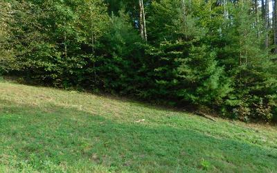 Hayesville Residential Lots & Land For Sale: 15 Moore Acres
