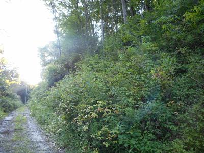 Robbinsville Residential Lots & Land For Sale: Tk42 Little Snowbird