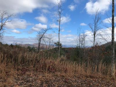 Murphy Residential Lots & Land For Sale: Pointe Overlook