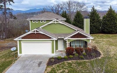 Hayesville Single Family Home For Sale: 164 Bentgrass Circle