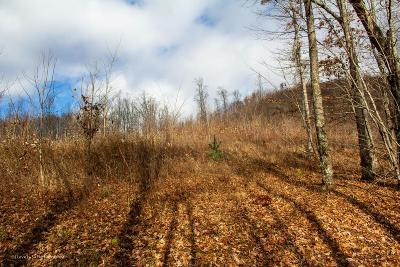 Hayesville Residential Lots & Land For Sale: Lot 1 Lories Mountain Drive