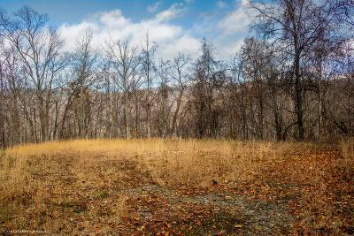 Hayesville Residential Lots & Land For Sale: Lot 7 Lories Mountain Drive