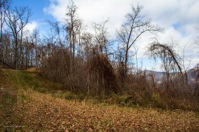 Hayesville Residential Lots & Land For Sale: Lot 9 Lories Mountain Drive