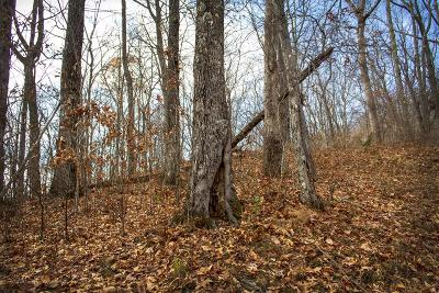 Hayesville Residential Lots & Land For Sale: Lot 10 Lories Mountain Drive