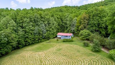 Topton Single Family Home For Sale: 191 Deweese Rd