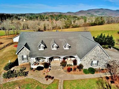Blairsville Single Family Home For Sale: 3353 Ivy Log Road
