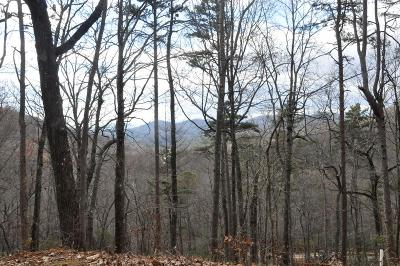 Murphy Residential Lots & Land For Sale: Lot 11 Copper Mountain Drive