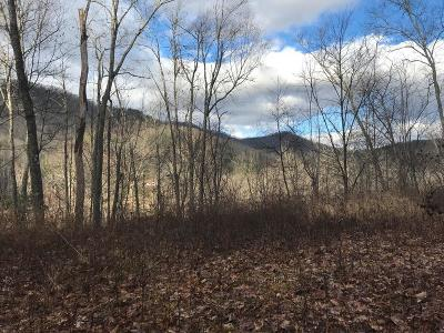 Robbinsville Residential Lots & Land For Sale: Lot E-1 Great Camps At Franks Creek