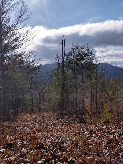 Murphy Residential Lots & Land For Sale: 00a McGwire St./Brittain St. Wilscott
