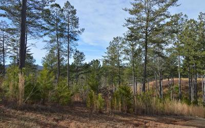 Blairsville Residential Lots & Land For Sale: Lot 285 Thirteen Hundred
