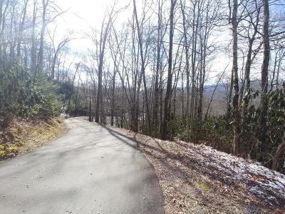 Topton Residential Lots & Land For Sale: 3.57 Acr Summit View Drive