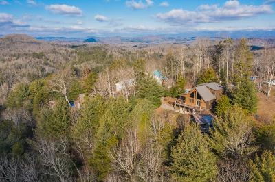 Murphy Single Family Home For Sale: 47 Mountain Pass Drive