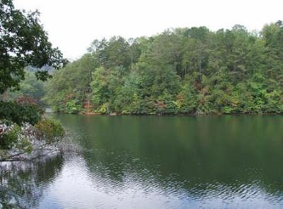 Robbinsville Residential Lots & Land For Sale: Lot 8 Lakeside Terrace