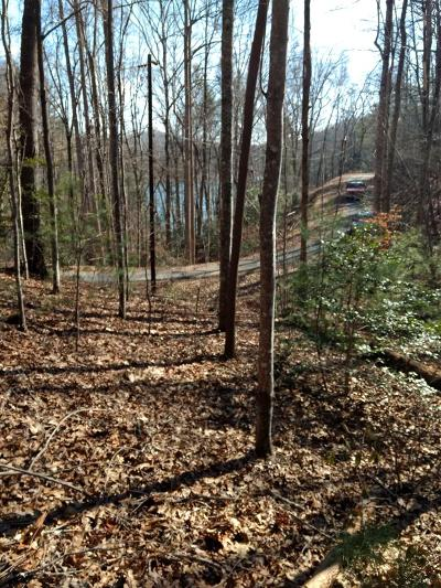 Murphy Residential Lots & Land For Sale: Lot 9 Wildwood Drive