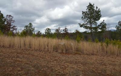 Blairsville Residential Lots & Land For Sale: Lot 67 Northshore