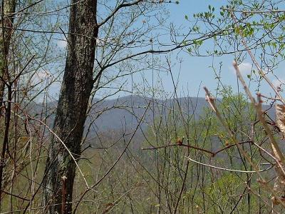 Topton Residential Lots & Land For Sale: 00 Hidden Lakes