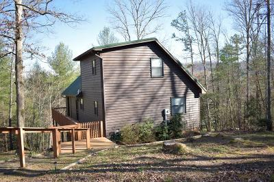 Murphy Single Family Home For Sale: 185 River Top View