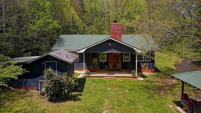 Suches Single Family Home For Sale: 35 Old Skeenah Gap