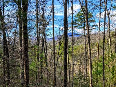 Murphy NC Residential Lots & Land For Sale: $39,000