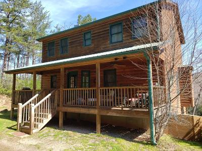 Hayesville Single Family Home For Sale: 888 Laurel Branch Road