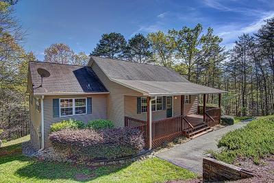 Warne Single Family Home For Sale: 478 Hillside Drive