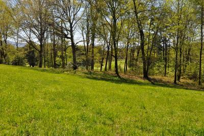 Hayesville Residential Lots & Land For Sale: Lot 5 Chatuge Shores Circle