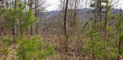 Hayesville Residential Lots & Land For Sale: Lot 6 Pounding Mill Overlook