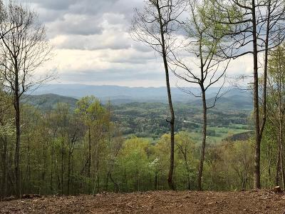 Brasstown Residential Lots & Land For Sale: 19 Ac Madison Lane