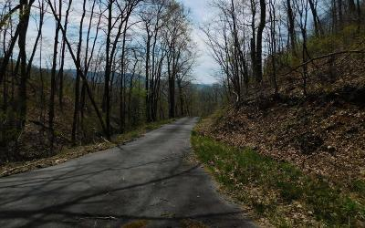Hayesville Residential Lots & Land For Sale: Red Bird Drive
