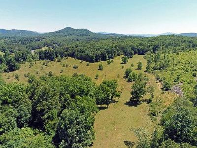 Warne Residential Lots & Land For Sale: 61.32 Ac Old Hwy 64