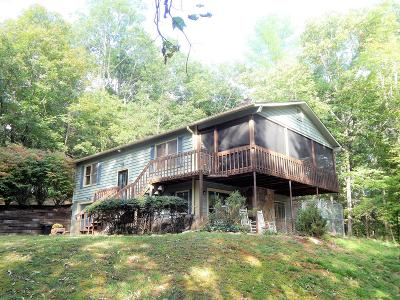 Hayesville Single Family Home For Sale: 2073 Setaiwig