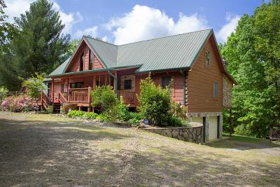Blairsville Single Family Home For Sale: 335 Harold Parham
