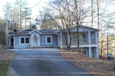 Brasstown Single Family Home For Sale: 36 Payne Road