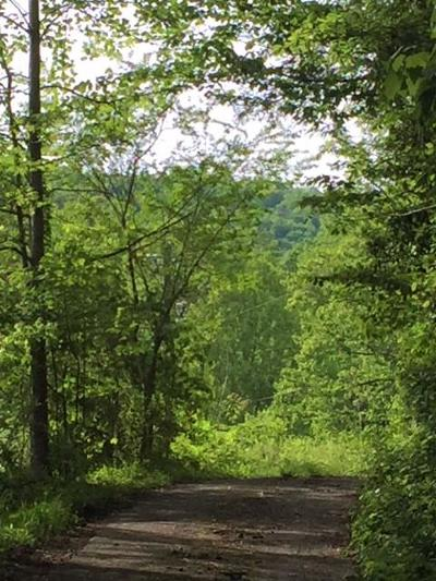 Robbinsville Residential Lots & Land For Sale: 00 Peace Mountain
