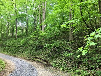 Robbinsville Residential Lots & Land For Sale: 00 Yellow Creek Rd.