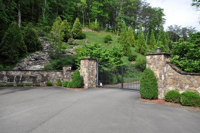 Murphy Residential Lots & Land For Sale: Lot 17 Rustic Valley Hollow