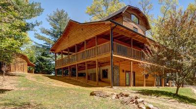 Murphy Single Family Home For Sale: 143 Amandas Way