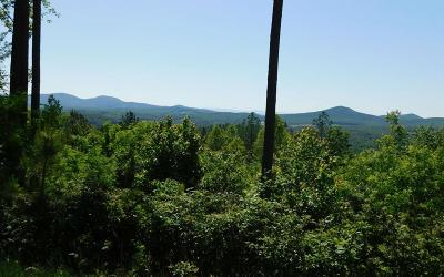 Blairsville Residential Lots & Land For Sale: Lot 356 The Cove At Thirteen Hundred
