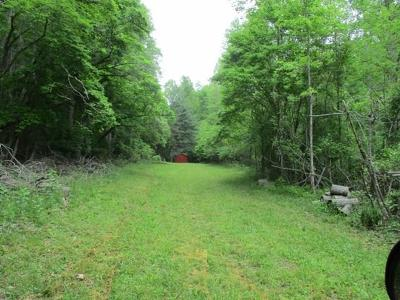 Murphy Residential Lots & Land For Sale: 11.12 Glen Loudmilk Road