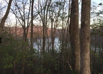 Topton Residential Lots & Land For Sale: Indian Lake Road