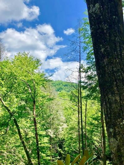 Murphy Residential Lots & Land For Sale: Greasy Creek Road