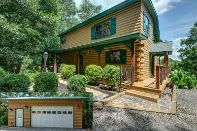 Murphy Single Family Home For Sale: 52 Relaxed Path
